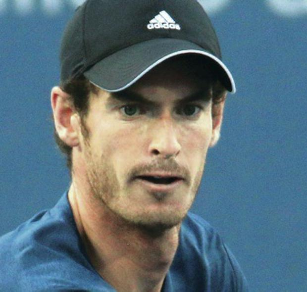 Dutch test: Andy Murray faces Robin Haase in first round