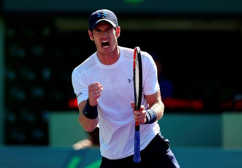 Landmark victory: Andy Murray