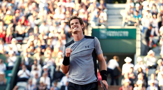 Any Murray will take on Novak Djokovic for a place in the French Open final