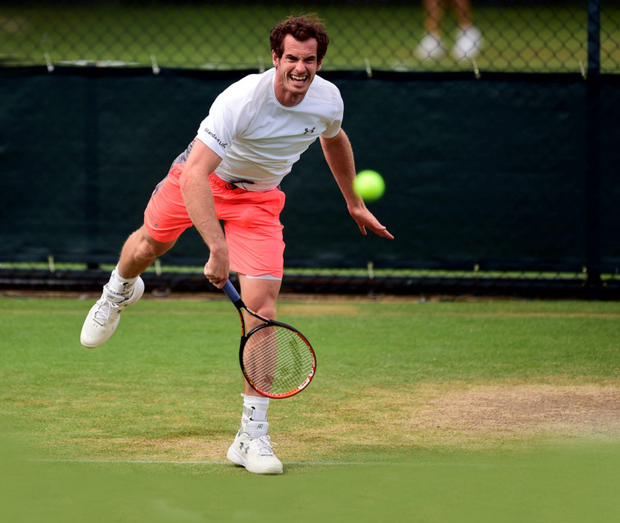Fired-up: Andy Murray has stepped up his training in anticipation of Wimbledon