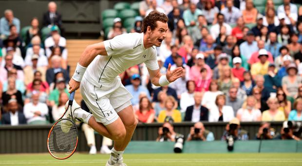 Striding ahead: Andy Murray was never in trouble during his win over Vasek Pospisil