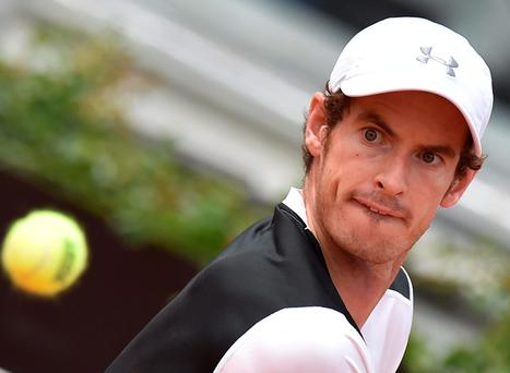 Net gain: Andy Murray