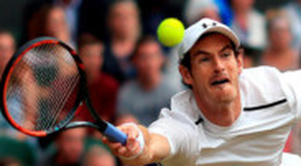 In a hurry: Andy Murray needed just one hour and 43 minutes to defeat Nick Kyrgios yesterday