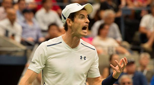 Andy Murray is the world's best tennis player