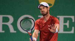 Hitting out: Andy Murray