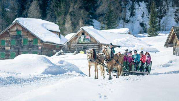 Obertauern horse drawn carriage