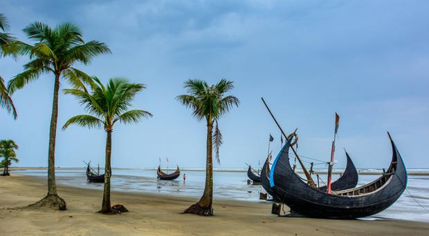 Photo of the Cox's Bazar Sea Beach with coconut trees, the longest sandy sea beach in the world