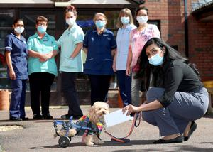Rescue dog, Henry 'Wee Wheels' delivers letters written by P7 Moira Primary School pupils to manager Jisha Jacob and staff members for the residents at Laganvale Care Home, Moira.