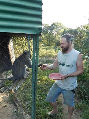 Work on the Wild Side. Mark Ashcroft giving meds to adult male Hector.