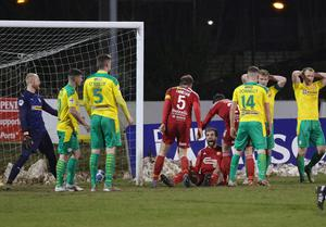 Portadown's Adam McCallum roars with delight after scoring a late equaliser against Cliftonville