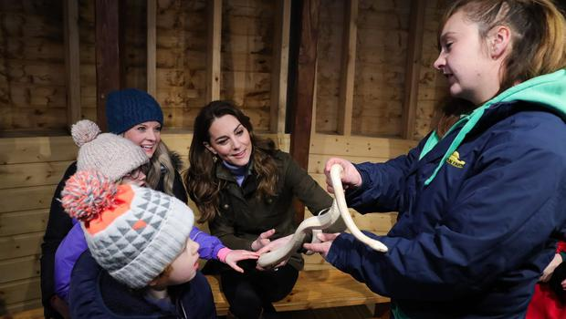 Press Eye - Belfast - Northern Ireland - 12th February 2020 -  HRH The Duchess of Cambridge pictured at The Ark Open Farm in Newtownards. During her visit to the farm, HRH will met with local representatives of Early Years and families who have benefitted from the work of the charity. Young children from two local nurseries were also present.  The Duchess received a guided tour of the facility, meeting with the owners and staff of the family-run farm and viewed various animals during her walkabout. Photo by Kelvin Boyes / Press Eye.